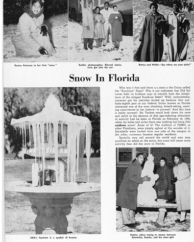 February 12 1958 Snow in Florida 380px